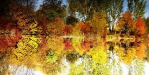 Vyhodnotenie fotosúťaže spojené s výstavou Prírodných krás južného Zemplína