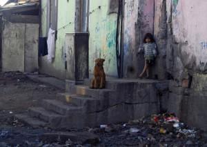 Otrasné podmienky psov v osade, pomôcť môže kastrácia