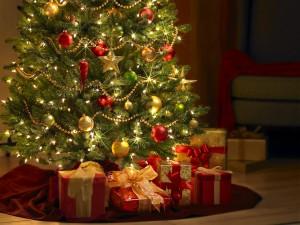 Vianočný koncert študentov SOŠ